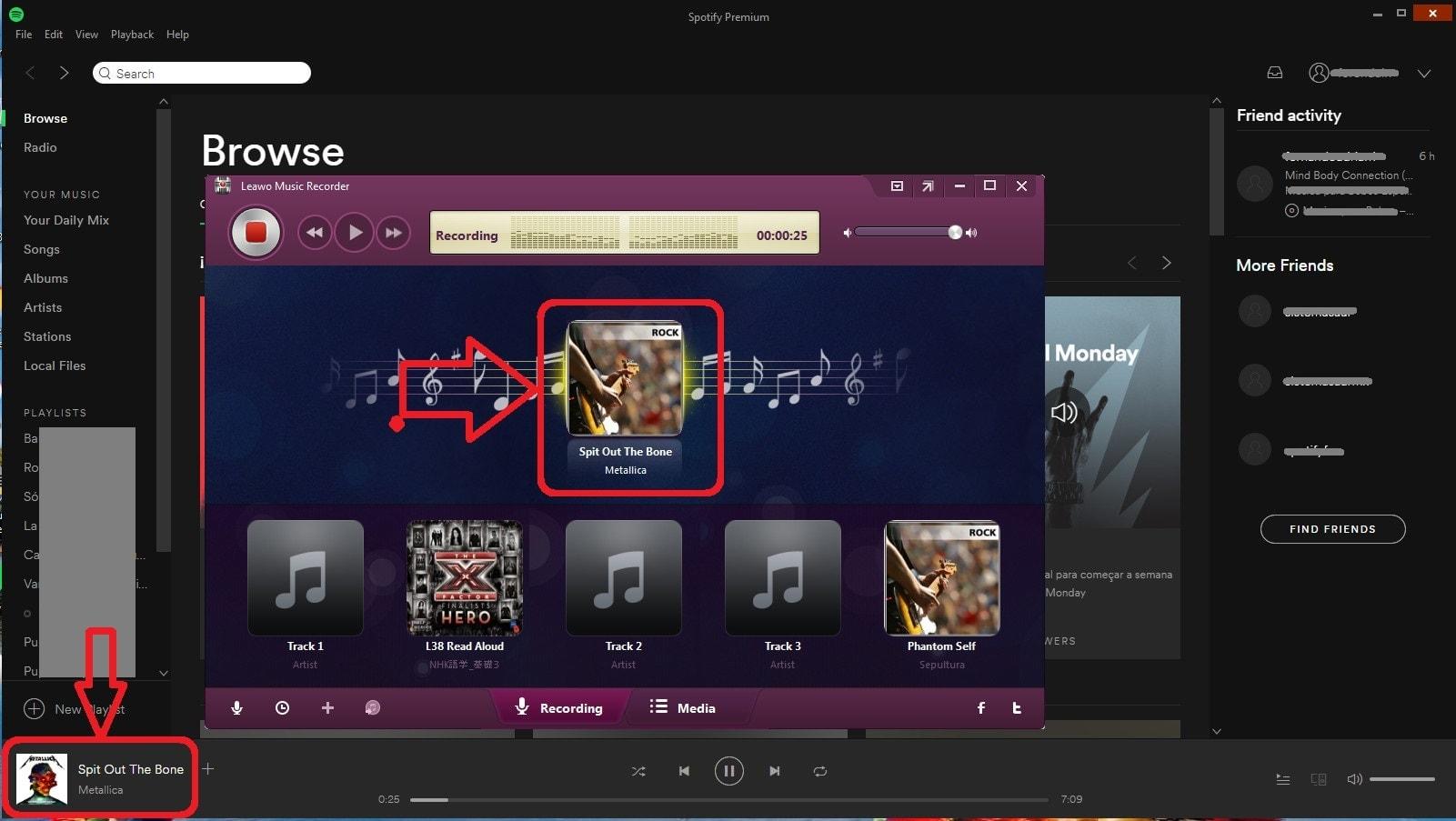 Leawo music recorder grabando audio de spotify
