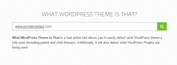 obtener-plantilla-y-plugins-wordpress-resultados